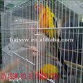 forte gaiola do papagaio