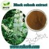 Black Natural Cohosh P.E. Powder(2.5%;8% Triterpene Glycosides by HPLC)