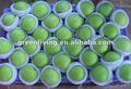 Porcellana verde/mela jonagold prezzo e specifiche