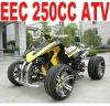250CC ATV QUAD EEC APPROVED(MC-388)