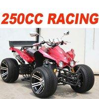 250CC ATV QUAD BIKE(MC-386)