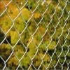 material cage / never roll up chain link mesh fence /pvc coated cyclone wire mesh