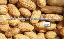 Better Peanut Shelling Machine
