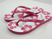 2012 flip flop