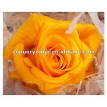 2012 Top Quanlity Preserved Flowers Wedding Souvenirs