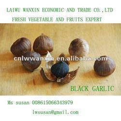 black garlic single bulb garlic