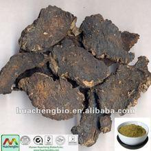 ISO&GMP Rehmannia glutinosa Libosch Extract powder