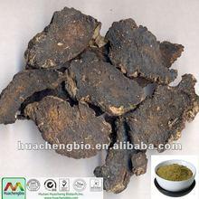 ISO&GMP Rehmannia glutinosa Extract powder