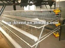 Nigeria galvanized Bird House for layer equipment