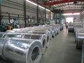 revestida da cor bobina de alumínio galvanizado