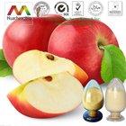 ISO&GMP Polyphenol/Phloridzin/Phloretin Apple Skin P.E.