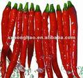 Extracto natural de la pimienta de chile de la capsicina 95%-98% del polvo del 100%