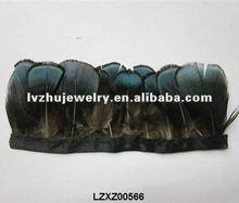 lady Amherst pheasant plumage fringe trims natural LZXZ00566