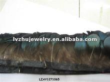 lady Amherst pheasant plumage fringe trims natural LZAY1271065