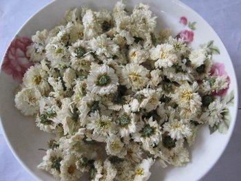 chrysanthemum tea/flower tea/chinese tea factory