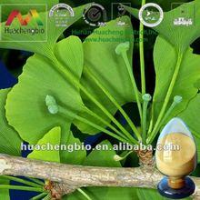 ISO&HACCP Water Soluble Ginkgo Biloba Extract.