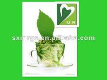 organic green tea extract & powder supplier