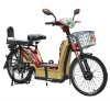 big loading electric bicycle
