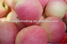 gala apple 2012 crop