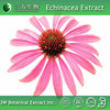 100% Pure Echinacea Extract Made in China