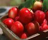 Newest delicous red fresh apple/crisp sweet apple