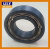 High Performance Largest Silicon Nitride Bearing With Great Low Prices !