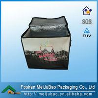 food warmer 6 can cooler bag