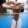 HOT SALES cervical spine with neck artery, occipital bone, disc and nerve model, cervical spine model