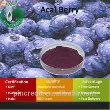 Acai Berry Extract/Acai Berry Brazil Export/Acai Berry