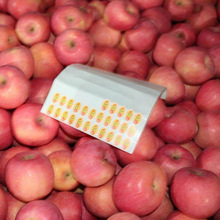 Chinese Sweets Fresh Delicious Apple Hot Sale In South Africa