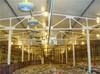 high quality farm corn sheller machine as chicken house steel structural
