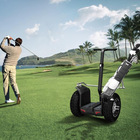 2014 CHIC- GOLF single seat electric golf cart