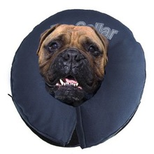 Total Pet Health Inflatable Collar for Pets