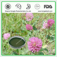 Best natural Red Clover Extract 8% Isoflavone / Trifolium Pratense L