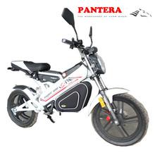 PT- E001 Intelligent Drive Brushless DC Motor Shifting New ModeL Nice Electric Dirt Bike for Kids