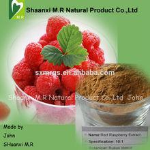 Factory Supply High Quality Raspberry Ketone 98% 99% for Health