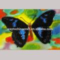pintado a mano tapices de pared azulejos de cerámica deimágenes de las mariposas