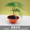 oval shape flower pot flower pot bench made in China flower pot