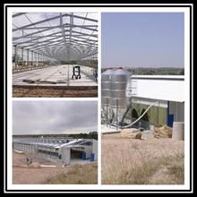 steel construction include bird feeder cage