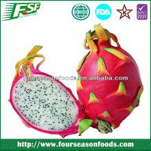 2014 High quality frozen organic dragon fruits