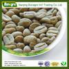strong taste arabica green coffee bean