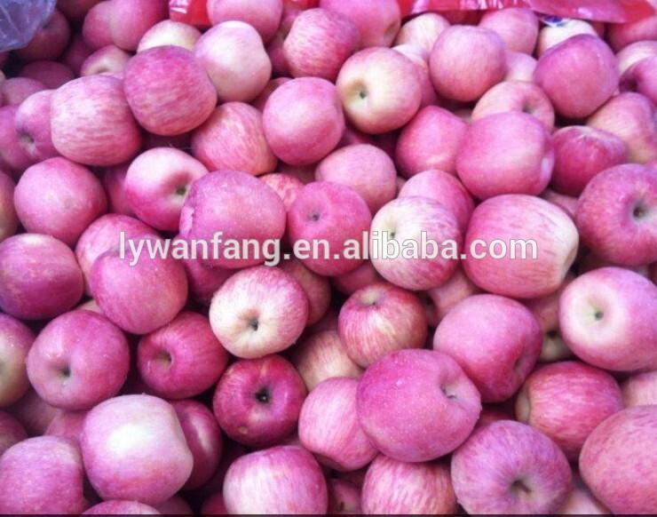 High Quality Fresh Fuji Apple