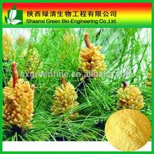 good price in canada pure natural pollen pini powder