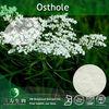 Cnidium monnien Extract 10-98% HPLC Osthole, Osthole powder, Osthol