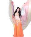 Oryantal dans kanatlar performans için, oryantal dans kostüm kanatları, melek kanatları satılık