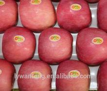 Fresh Greek Apples Fuji