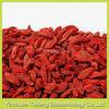 Red zhongning dried goji berry ningxia