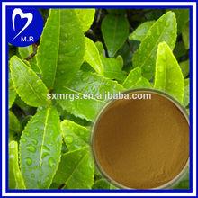 100% Natural Green Tea Extract KOSHER ISO9001 cert
