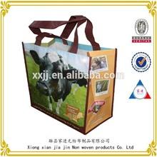 Promotional full printed bopp laminated pp woven bag