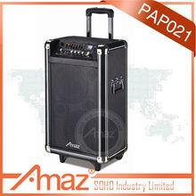 8 inch speaker max professional speaker system